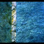 Land and Sea, 2008