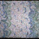 Sea Mantle Pinctada, 1993